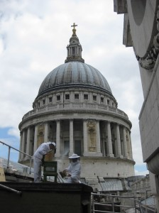 Bees at St Paul's