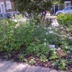 foodandflowersJUne2