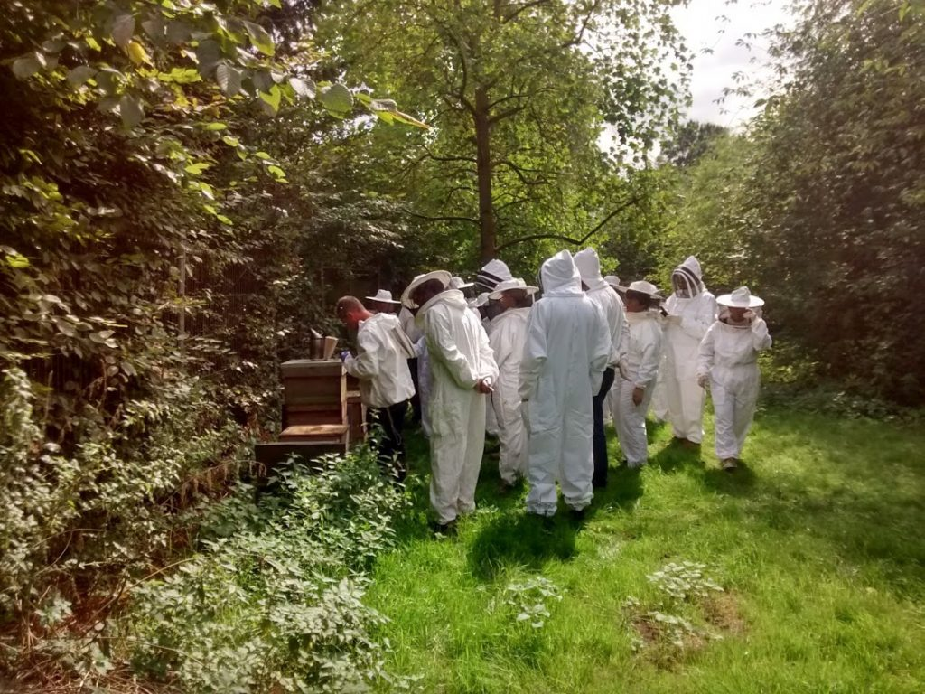 ac51016af2001 It s been another exciting year for Urban Bees. Here s our highlights