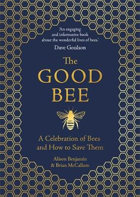 The Good Bee Book Image
